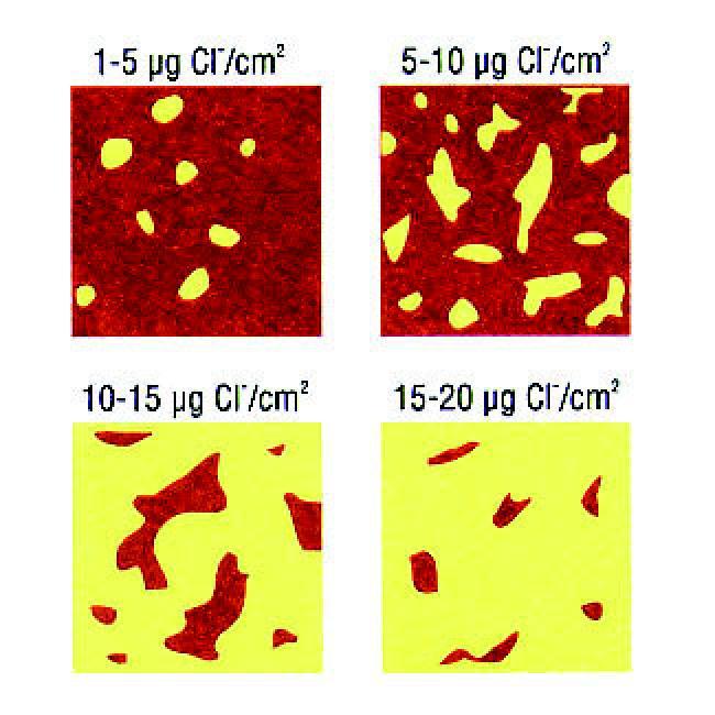 Chlorid Schnelltest